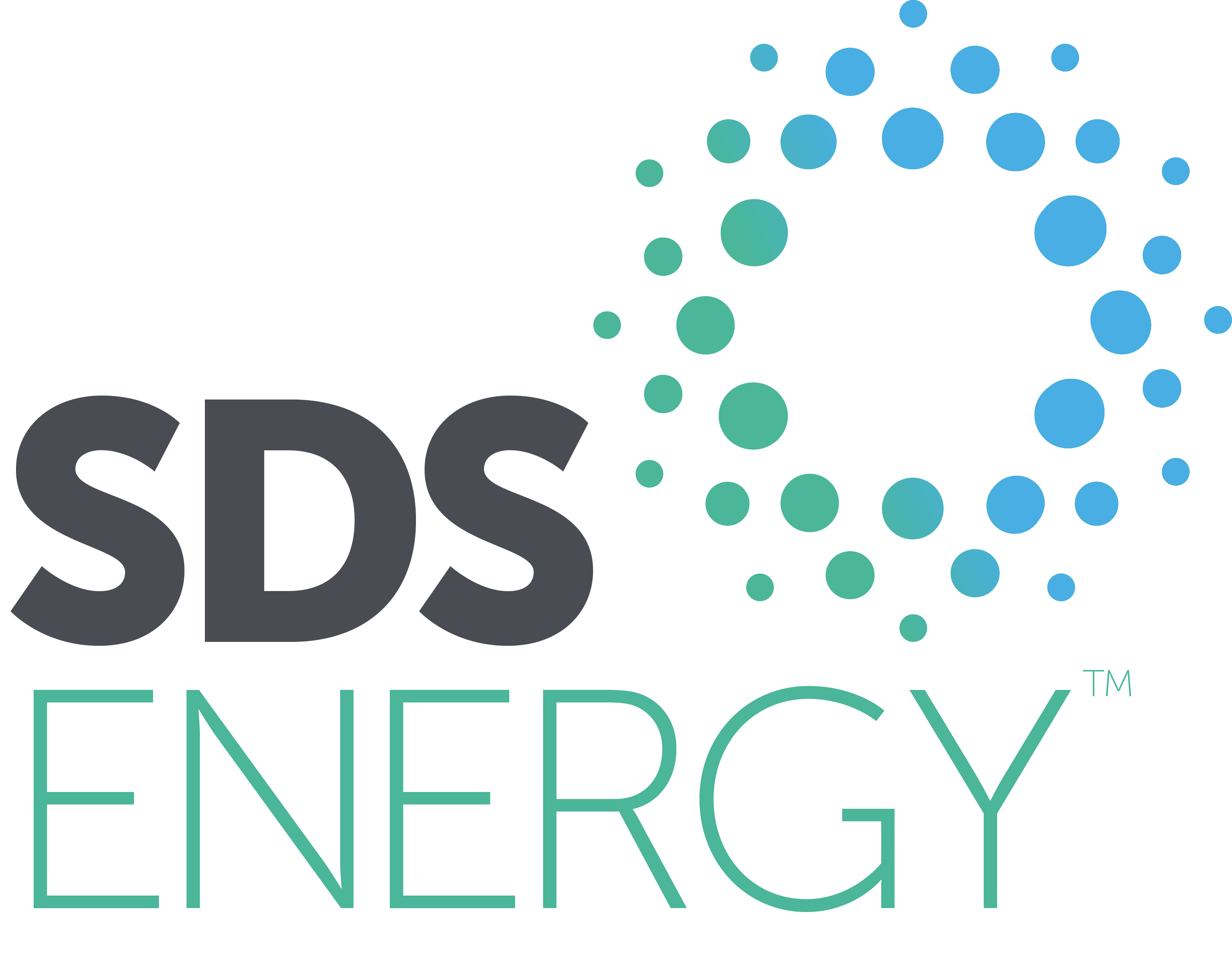 sds energy partner